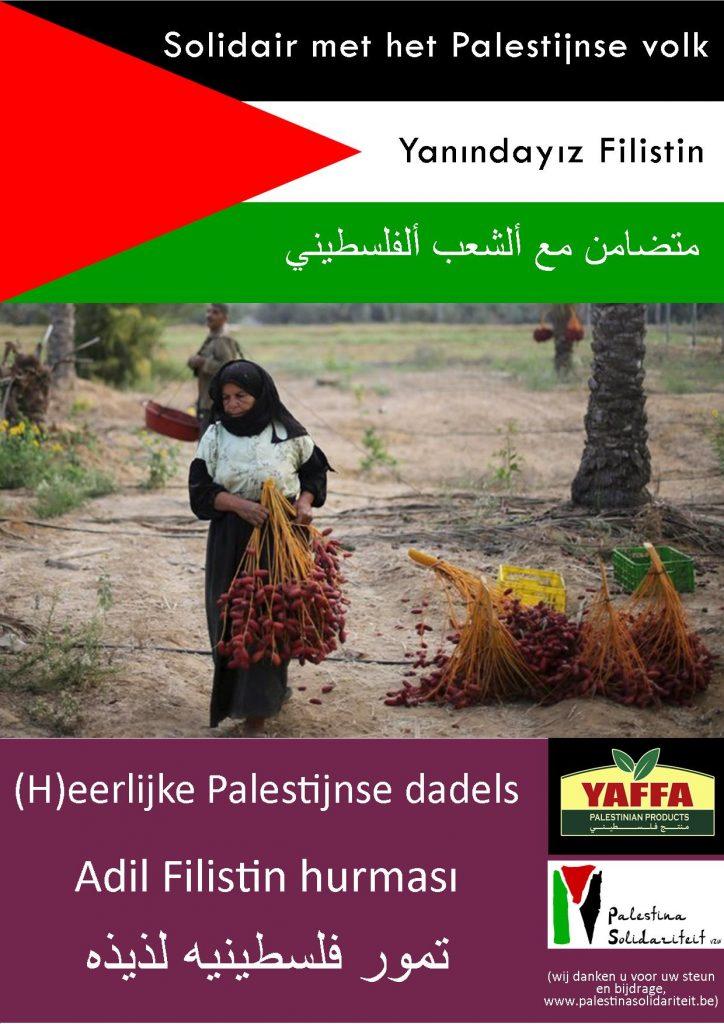Palestijnse dadels